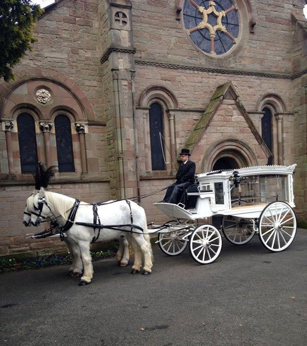 White horse drawn hearse